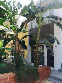2 BHK House & Villa for Sale in Pilerne