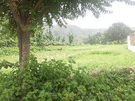 1 BHK Farm House for Sale in Morni Hills, Panchkula