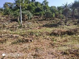 2750 Sq. Yards Farm Land for Sale in Morni Hills, Panchkula