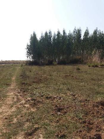 400 Acre Farm Land for Sale in Anandpur Sahib, Mohali