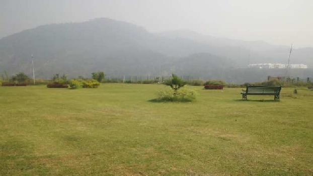 2500 Sq. Yards Farm Land for Sale in Chandi Kotla, Panchkula