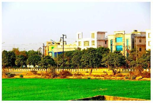 65 Sq. Yards Residential Plot for Sale in Sector 88 Noida