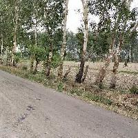 1.5 Acre Industrial Land for Sale in Kharkhoda, Sonipat