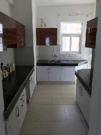 3 BHK 1690 Sq.ft. Residential Apartment for Rent in Sector 82 Gurgaon