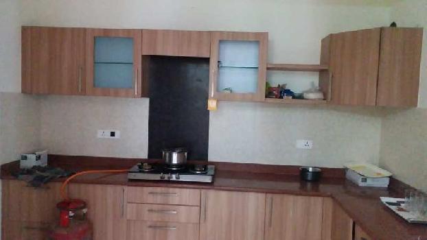 2 BHK 1724 Sq.ft. Residential Apartment for Rent in Nalapani Tapovan, Dehradun Dehradun