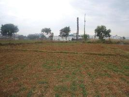 45000 Sq.ft. Commercial Land for Rent in Baddi, Solan