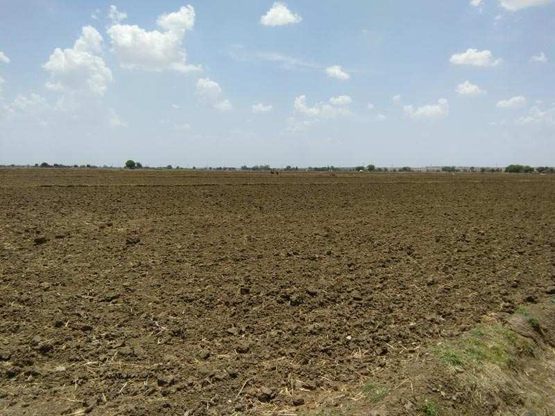 Farm Land for Sale in Bundi - 250 Bigha