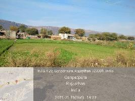 2.5 Bigha Farm Land for Sale in Nainwa
