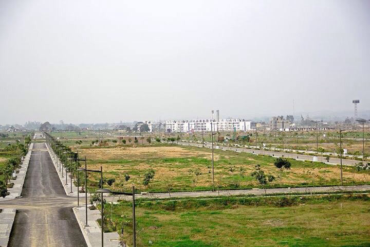 350 Sq. Yards Residential Land / Plot for Sale in Mullanpur - 350 Sq. Yards