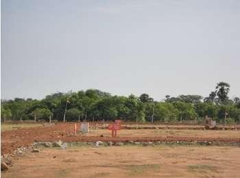 Residential Plot for Sale in Urapakkam, Chennai South - 1800 Sq. Feet