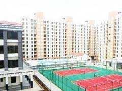 2 BHK Flat for Rent in Sector 36, Navi Mumbai